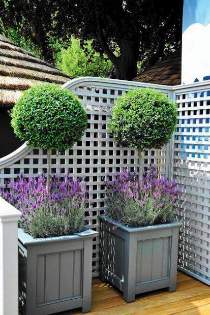 Zdjecie Numer 8 W Galerii Modne Donice Na Taras I Balkon Containergardeningideas Backyard Landscaping Front Garden Backyard