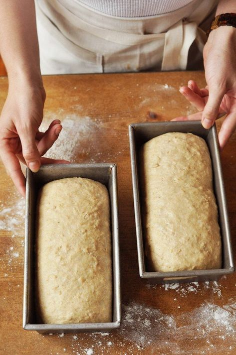 Joy the Baker makes two big loaves of sliced bread with oats, whole wheat flour, and honey. It's an easy bread and approachable bread recipe great for bakers of any skill level!
