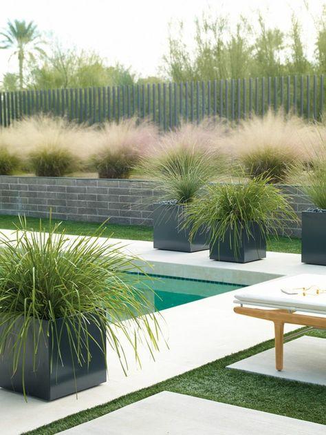 jardin paysager élégant avec piscine