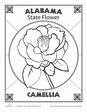 Alabama State Flower Alabama Map Projects Coloring Sheets For Kids