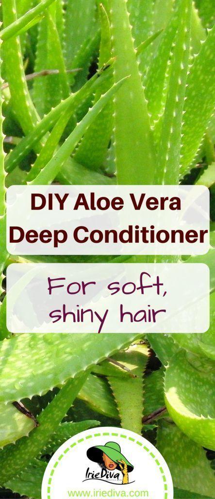 Diy Aloe Vera Mask To Moisturize Dry Hair Goruntuler Ile Sac