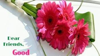 Free Download Latest Awesome Good Morning Flowers Pictures Good Morning Flowers Pictures Good Morning Flowers Good Morning Friends Images