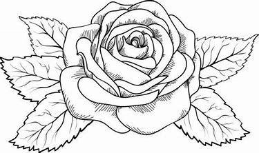 Image Result For Dibujos Para Colorear De Rosas Artesanias En