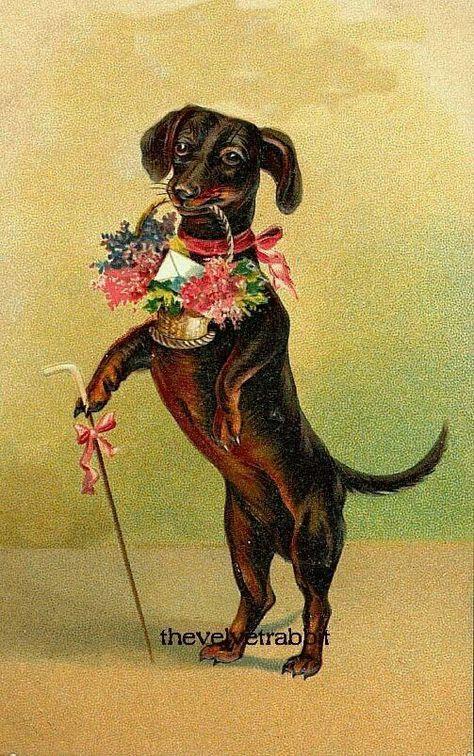 собачки на ретро открытках живет человек