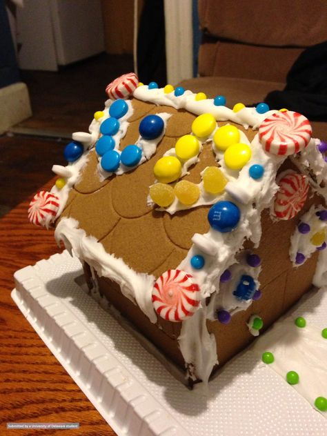 Student David Habibian celebrated the holiday season with this UD inspired ginger bread house