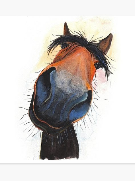 """""""HORSE PRiNT 'HAPPY DAVE' BY SHIRLEY MACARTHUR"""" Canvas Print by ShirleyMacA 