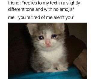 Friend Replies To My Text In A Slightly Different Tone And With No Emojis Me You Re Tired Of Me Ar Funny Animals Animal Memes Funny Pictures With Captions