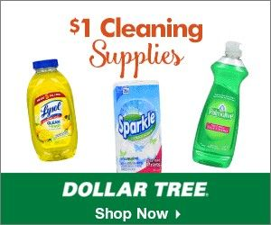 I Shop At The Dollar Tree For All Of My Regularly Used Household