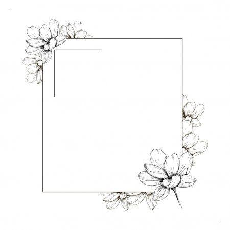 Flower White Background Border