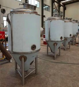 Hot Item Beer Brewing Equipment Micro Brewery 100l 200l 300l