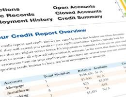 DeleteCollectionAccountsFromCreditReport  Nifty Ideas