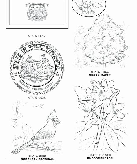 Wisconsin State Flag Coloring Page New Idaho State Flag Coloring