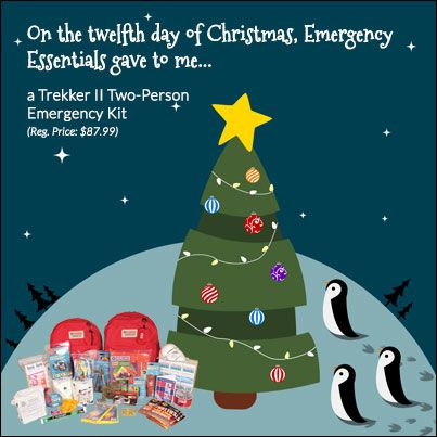 12 Days of Giveaways-GRAND PRIZE: Day 12--the Trekker II Two Person Emergency Kit #giveaway #survivalgear #preparedness