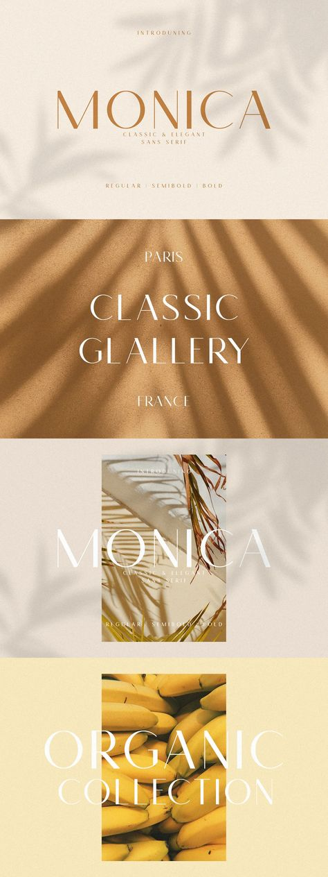 Monica - Classic & Elegant Sans Font