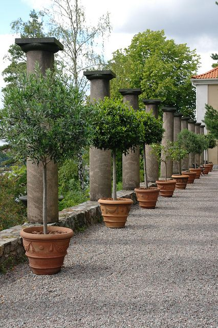 Superior Things We Love: Graveled Courtyards   Potted Trees, Gardens And Garden  Ideas   Things