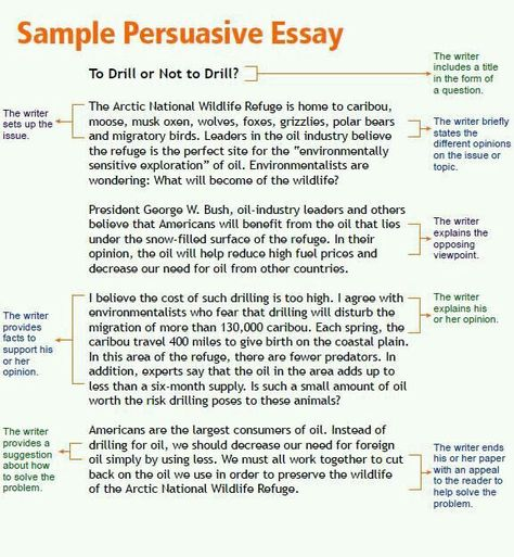 persuasive speech example debate topicsworksheets