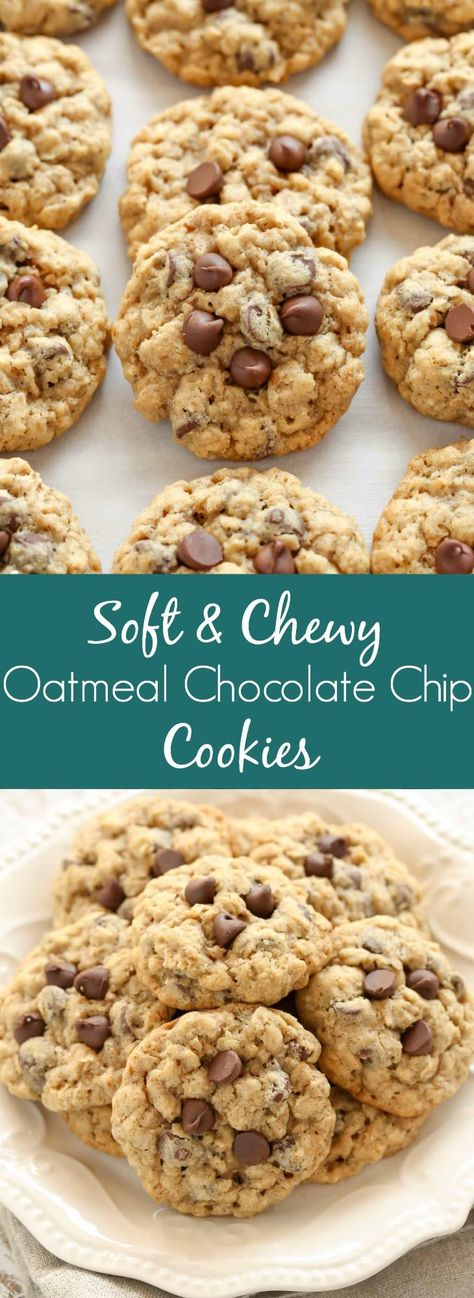 These Oatmeal Chocolate Chip Cookies are packed with oats, chocolate chips, and incredibly soft and chewy. These cookies are easy to make and delicious!