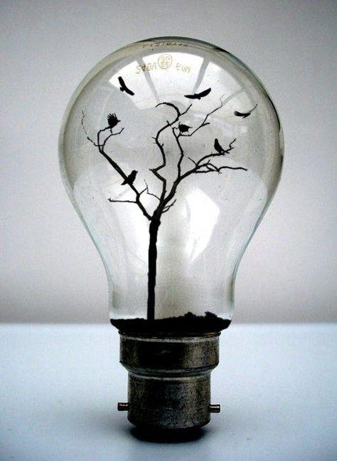 birds in a light bulb