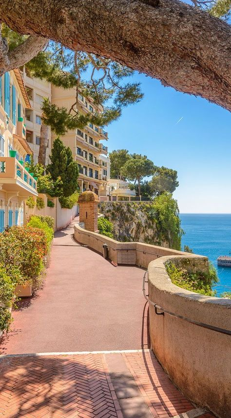 If you're interested in the wellness journey of a lifetime, Monaco is a great place to start. Learn more about what Monaco has to offer! Monte Carlo Monaco, The Places Youll Go, Places To Visit, Bósnia E Herzegovina, Best Day Spa, Places To Travel, Travel Destinations, Juan Les Pins, Budget Planer