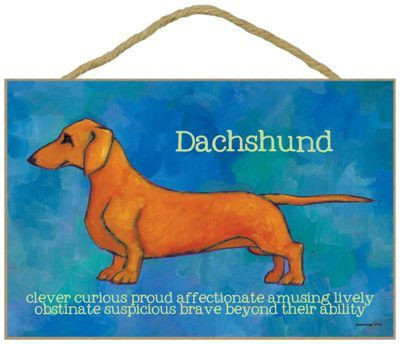 Dachshund Traits Characteristics Sign 7 5 X 10 Red Dachshund