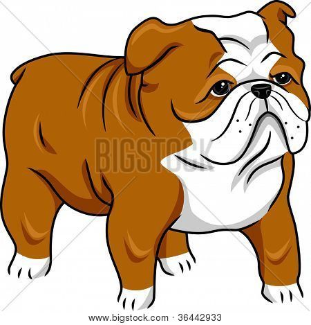 Illustration Featuring A Cute English Bulldog Poster Puppy