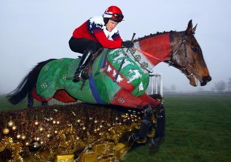 Christmas Horse Racing.Ap Mccoy Dons A Christmas Jumper On A Christmas Jumper