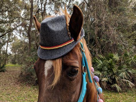 Gray Felt Fedora Hat For Small Horse Pony Or Miniature Horse Etsy Miniature Horse Small Horse Felt Fedora