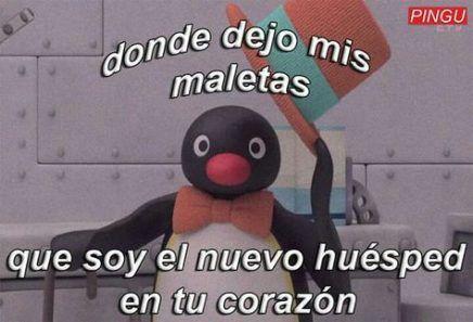 35 Trendy Memes Love Pingu Love Memes Memesgraciosoamor Pingu Trendy Memes Lindos Memes Nuevos Memes Romanticos