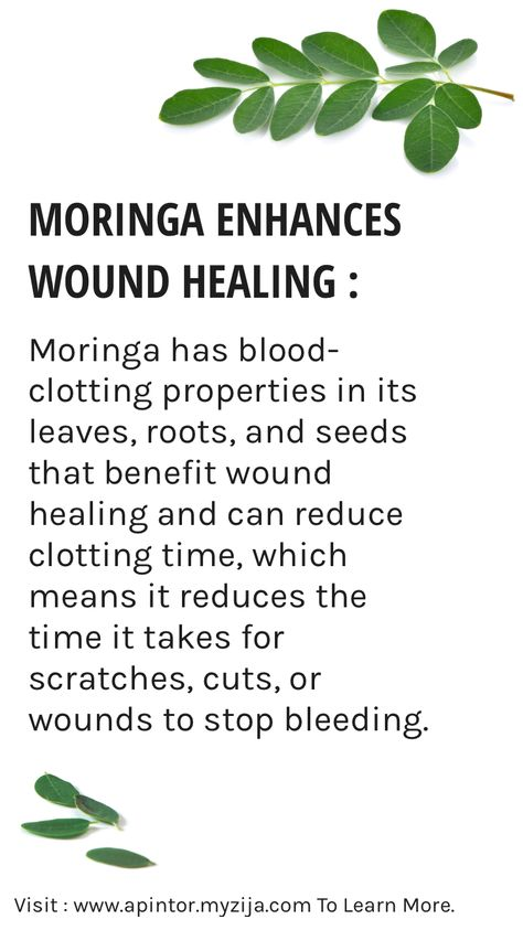 bloodclots Moringa Enhances Wound Healing...