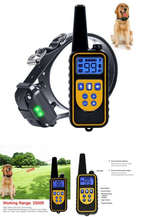 Dog Training Collar For Large Dog Or Small Dog With 2500ft Remote