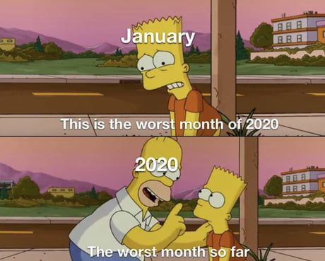 January 2020 Best Funny Pictures Memes Funny Pictures