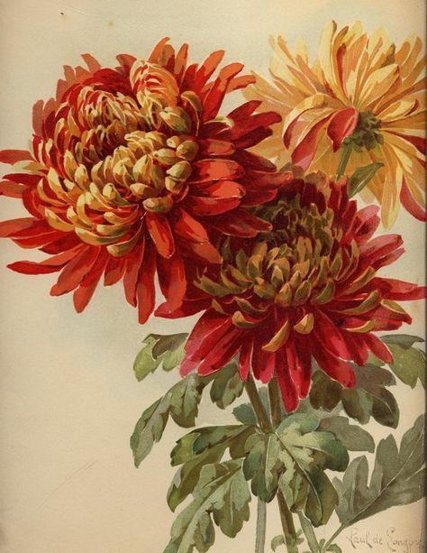 1896 calender stock 2 by rustymermaid-stock on DeviantArt