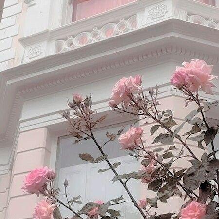 Pink Blue Pastel Flowers Aesthetic Pink Aesthetic Pastel Aesthetic Flower Aesthetic