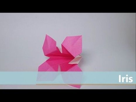 Seven Secrets About Origami Iris Flower Youtube That Has Never Been Revealed For The Past 10 Years Iris Flowers Origami Origami Flowers