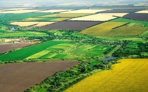 Recientemente se ha anunciado que Ucrania planea registrar su Catastro de Tierra Estatal sobre una blockchain, así como digitalizar las subastas de arrendamiento de tierras pertenecientes al Estado, posiblemente para poder registrarlas también con este sistema.