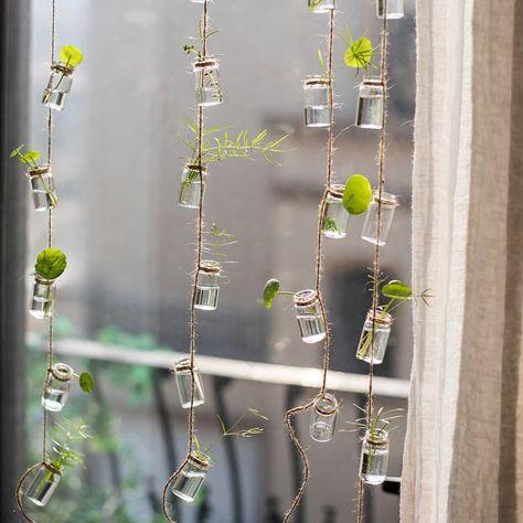 August Grove Frazee Rustic Rope Glass Hanging Planter   Wayfair