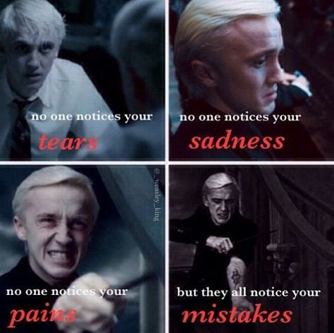 Draco is my favorite character in Harry Potter. Then Harry. --Description by DestinyandDoom Harry Potter Triste, Harry Potter Puns, Harry Potter Universal, Harry Potter World, Funny Harry Potter Quotes, Harry Potter Houses Traits, All Harry Potter Characters, Drarry, Dramione