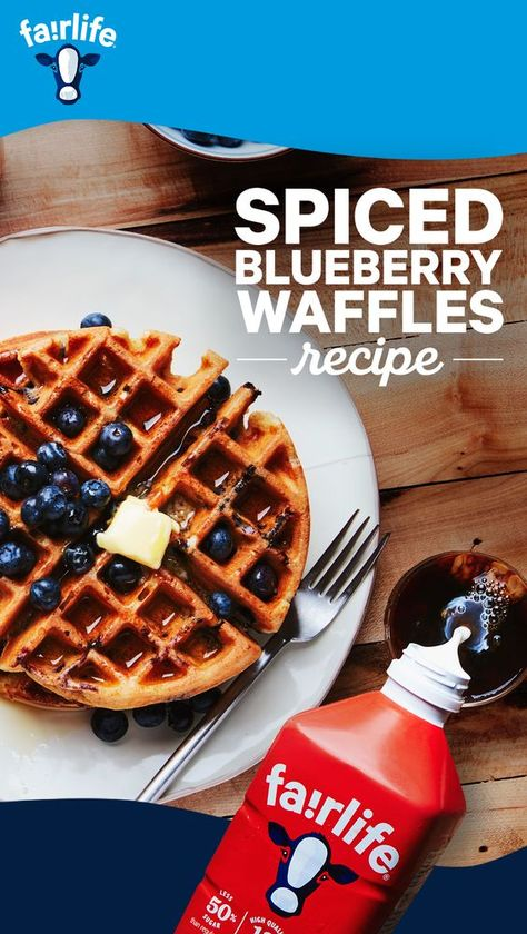 Dig your waffle iron out of the cupboard, today we've got 15 extremely delicious waffle recipes. Super crisp on the outside and light as a feather on the inside. #Waffles #WaffleRecipes #Breakfast #BreakfastRecipes #EasyrecipesMicrowave #EasyrecipesForCollegeStudents #EasyrecipesFast #EasyrecipesSpaghetti #EasyrecipesForBeginners
