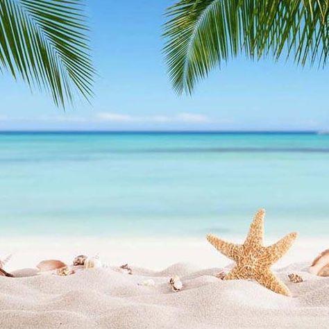 Beach Backdrop UK Ocean Blue Sky Starfish Summer Backdrop UK G-228 - 10'W*10'H(3*3m)