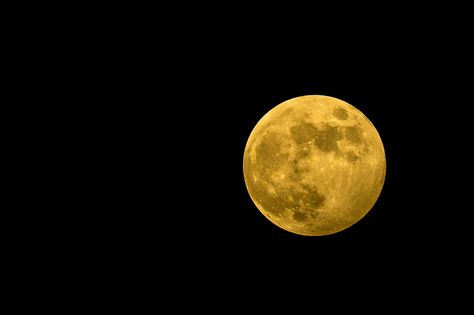 Harvest Moon in Miami, FL by Rui Teixeira on 500px
