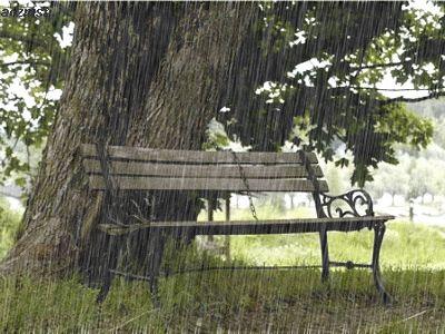صور مطر الشتاء صور أمطار متحركة أجمل خلفيات للمطر فى الشتاء أمطار متحركة 2019 Beach Path Rain Beautiful Views