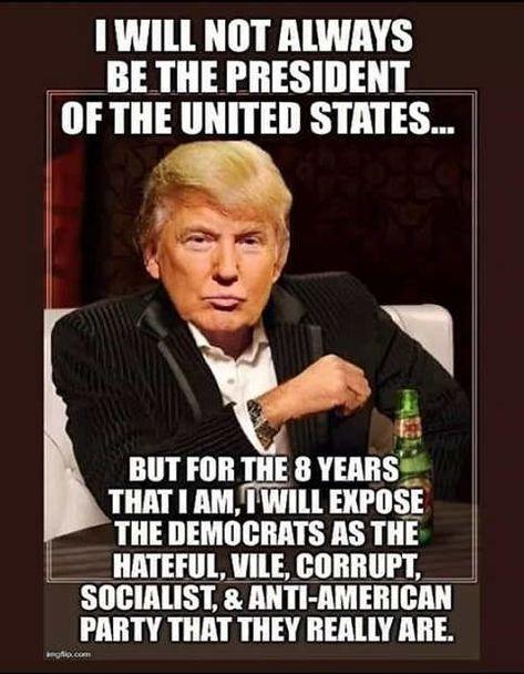 500+ Best President Trump images in 2020 | political humor, politics,  conservative politics