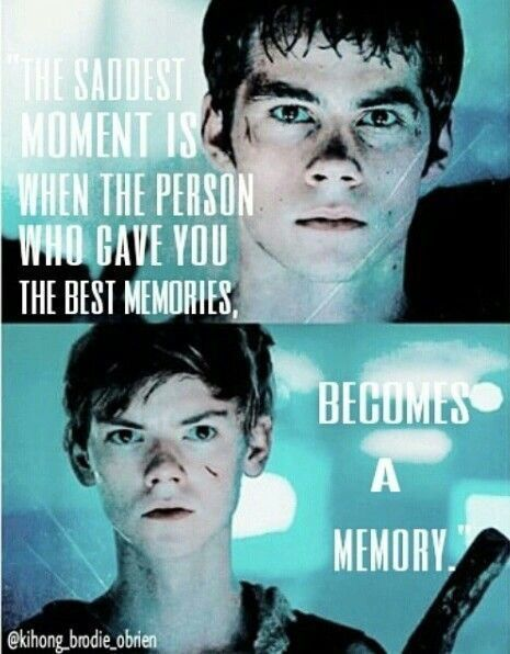 Read Chapter 8 from the story Till The End (TMR x TW fanfic) by with reads. Thomas POV: When we got back to the house. Maze Runner Quotes, Maze Runner Funny, Maze Runner Trilogy, Maze Runner Thomas, Maze Runner The Scorch, Maze Runner Cast, Maze Runner Movie, Maze Runner Series, The Scorch Trials