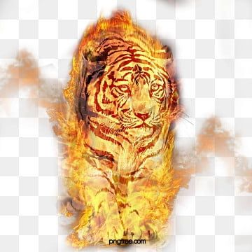 Good Vibes Tiger Face For T Shirt Design Good Clipart Symbol Tiger Png And Vector With Transparent Background For Free Download Psd Free Photoshop Free Photoshop Clipart Images