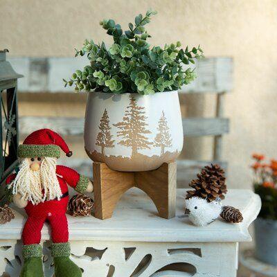 Nathen Ceramic Pot Planter In 2020 Ceramic Pot Planter Pots Christmas Plants Pot