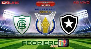 America Mg X Botafogo Ao Vivo Botafogo Rj Vitoria Hoje Botafogo