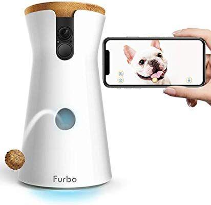Alexa Controlled Dog Door
