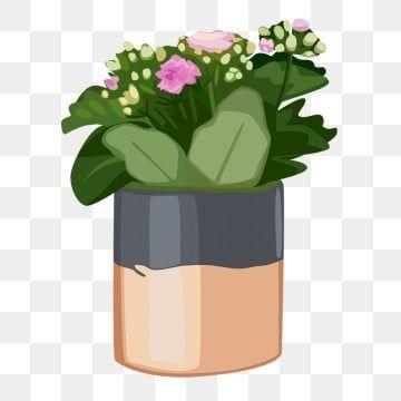 Brown Flower Pot Green Leaves Plantain Leaf Plant Cartoon Illustration Plant Clipart Hand Drawn Potted Illustration Beautiful Potted Plant Png Transparent Cl Green Flower Pots Flower Pots Plant Cartoon