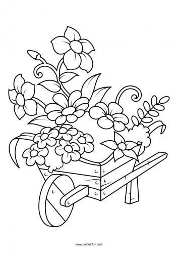 Free Flower Colouring Pages Colour Fun Free Flower Colouring