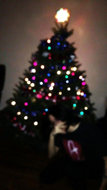 Rainbow Christmas Tree Lights Blurry Night Diy Crafts